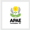 APAE Florianópolis – SC